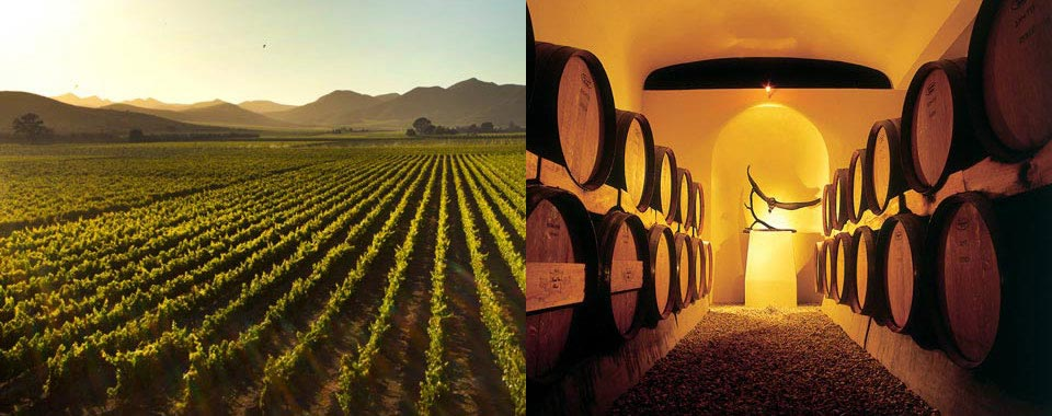 Robertson Winelands | Schoone Oordt Surrounds