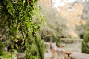 Winter at Schoone Oordt